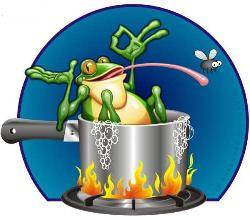 happy frog in hot water