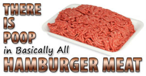 There are feces in all hamburger